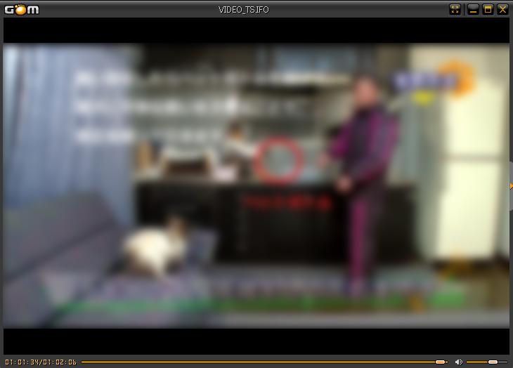 藤井聡さんの犬のしつけDVD 天罰方式画像