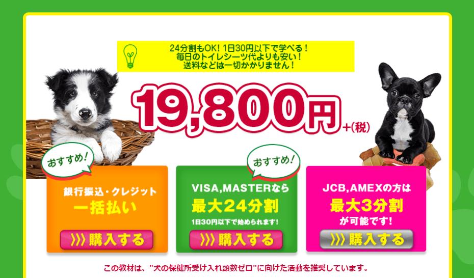 飯嶋志帆さん(しほ先生)のイヌバーシティ 販売価格画像