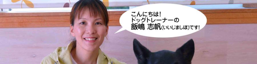 イヌバーシティ しほ先生 画像(公式サイトより抜粋)